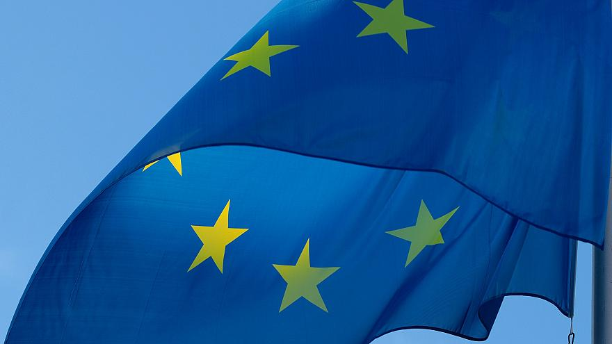 "EFA kicks off EU election race by launching a procedure to appoint a ""Spitzenkandidat"""