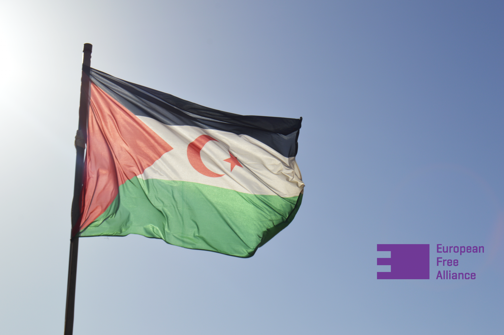 EFA calls for an immediate referendum on the self-determination for Western Sahara